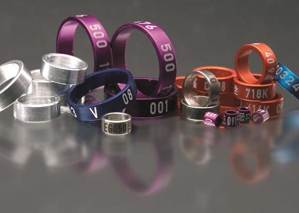 Coditech Rings